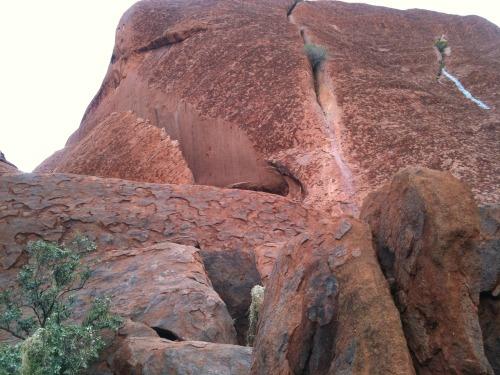 Uluru_-_kata_tjuta_035