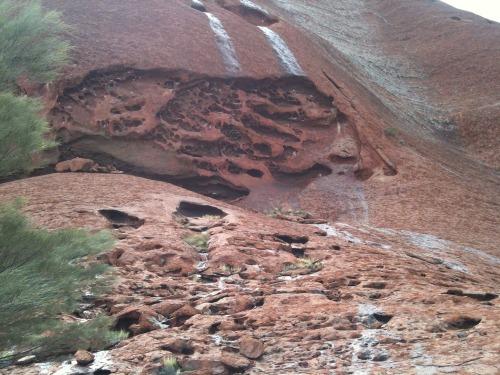 Uluru_-_kata_tjuta_044