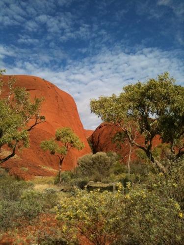 Uluru_-_kata_tjuta_108