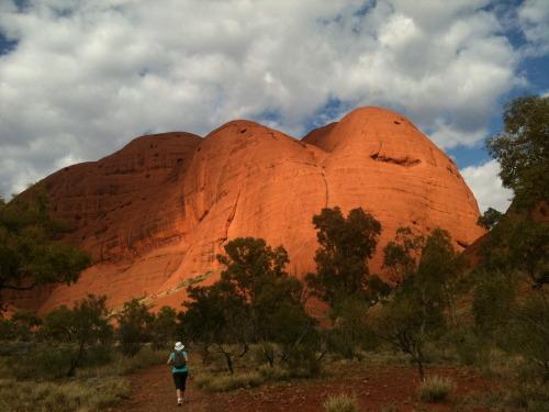 Uluru_-_kata_tjuta_115