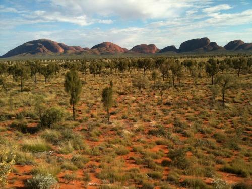 Uluru_-_kata_tjuta_126