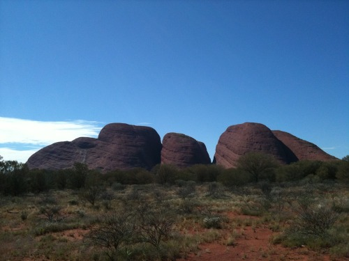 Uluru_-_kata_tjuta_147